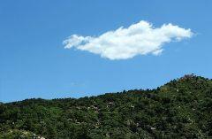 我是一片云作文