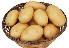 土豆的自述作文300字